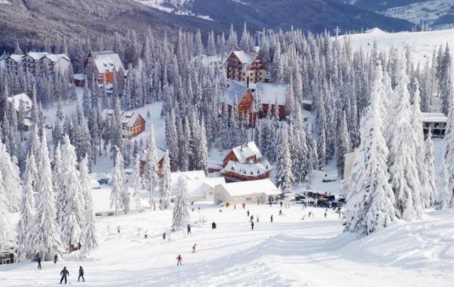 Интересные горнолыжные туры в Украине
