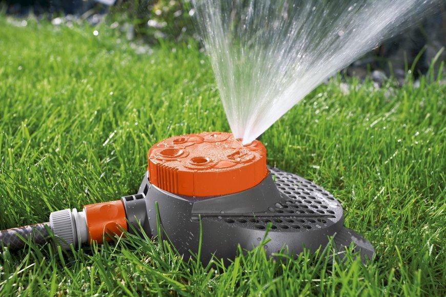 Важные аспекты при поливе газона
