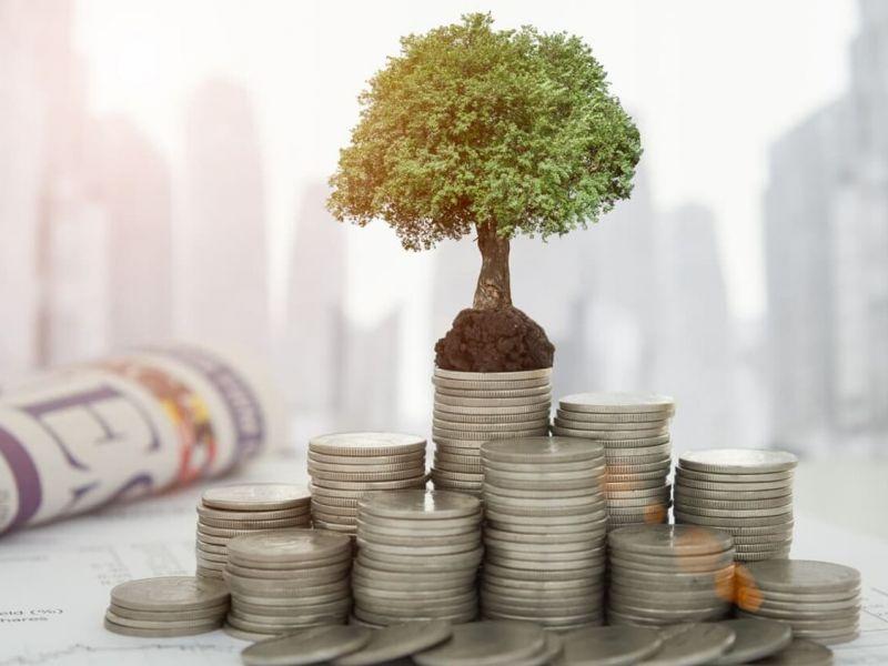 Какие инвестиции можно сделать в Украине?